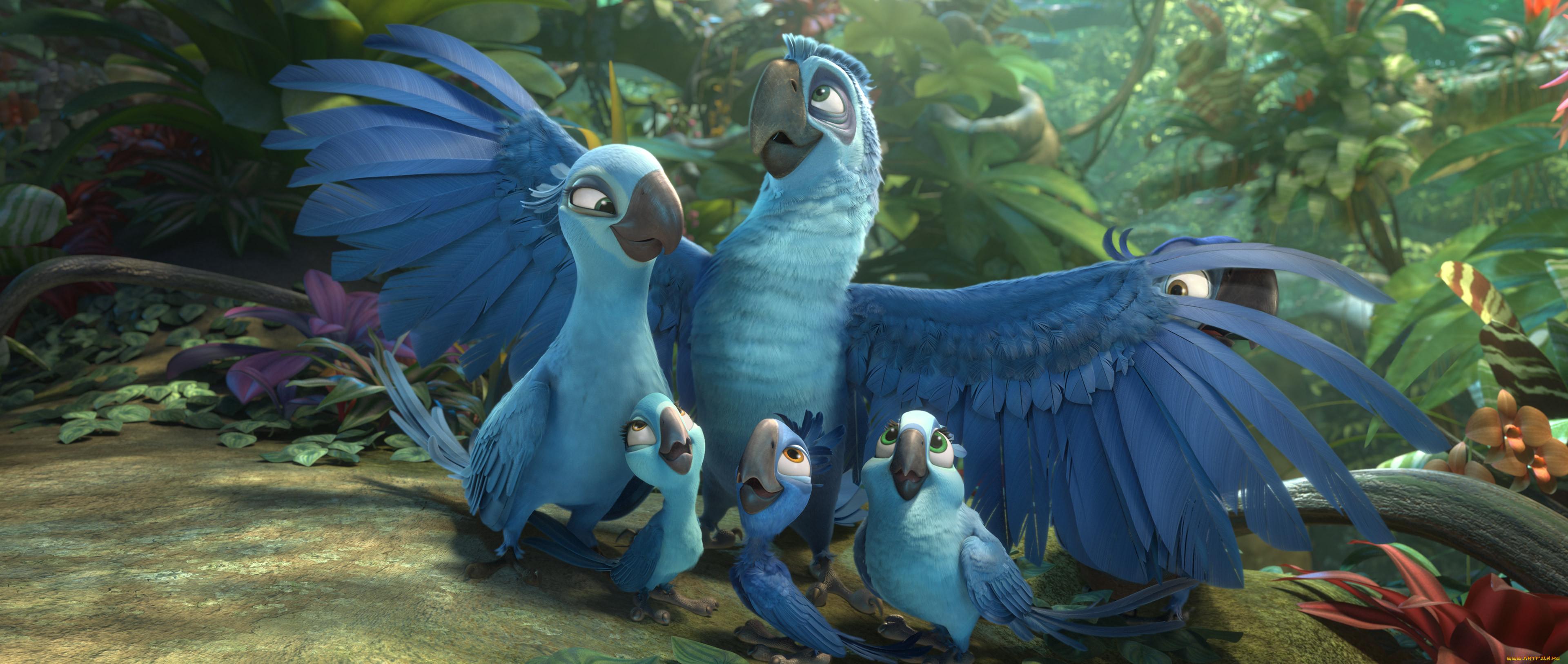 Мультфильмы дисней птицы